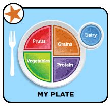 Essay on Putting My Best Food Forward - majortestscom